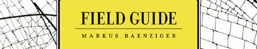 download the catalog for <em>Field Guide: Markus Baenziger</em>