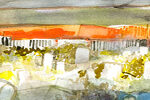 Laurie Wigham's watercolors